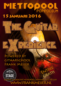 the guitar experience 2016